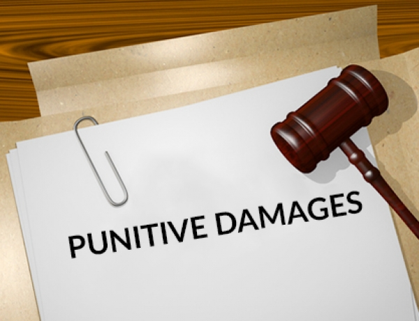 Employer Liability for Moral and Punitive Damages